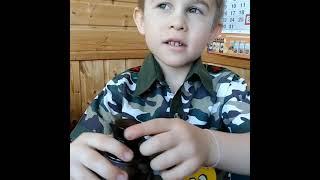 Отзыв мальчика про коллоидную фитоформулу от Эд Медицин для детей